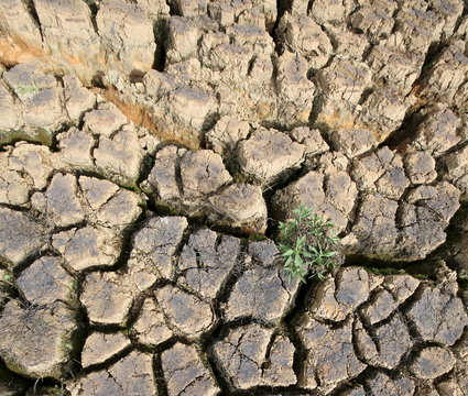 The cracked dry reservoir bed at the Jaguari reservoir is pictured in Joanopollis