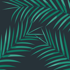 Exotic palm leaves. Palm leaves on white background. Exotic background
