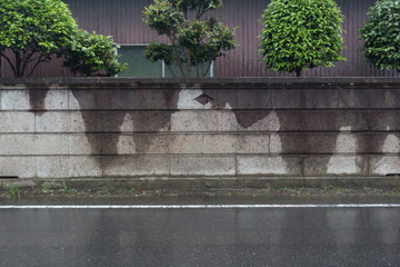 濡れた石塀