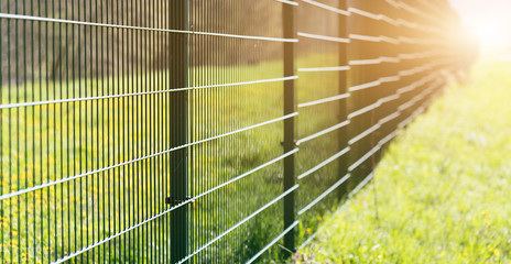 Metal fence leaving in perspective with the sun