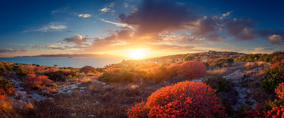 Panoramic view of sunset on the Mediterranean vegetation