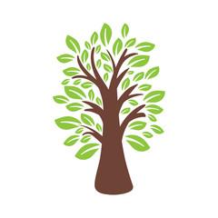 Illustration of tree. Vector