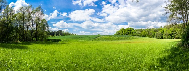 Tuinposter Platteland Summer landscape with forest and field in Czech Republic