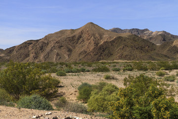 Mountain in the Mojave Desert