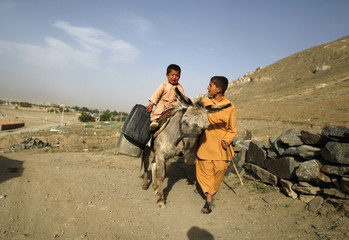 An Afghan child pulls his donkey that is carrying drinking water in Kabul