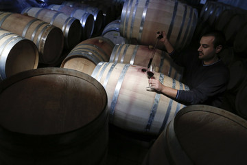 Wine expert Eleftheriou, 29, checks red wine, stored in oak barrels in a cellar at the winery of Papagiannakos in Porto Rafti, east of Athens