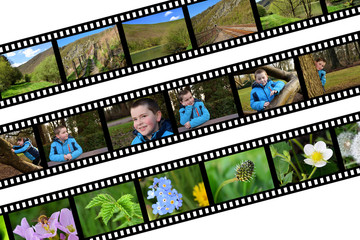 photo film planche contact