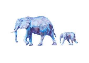 Watercolor elefants