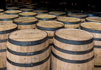 Fototapete - Group of Standing Bourbon Barrels