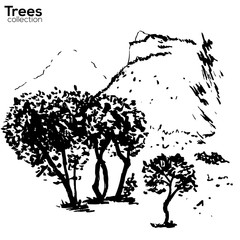Trees collection. Ink Herault, France landscape