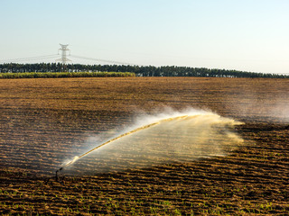 Sugar cane planting irrigation in Brazil