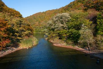Idyllic nature of Oirase Gorge on a sunny day in fall, Aomori, Japan