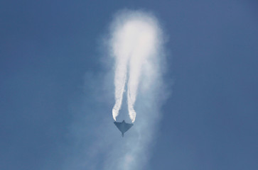 """An IAF light combat aircraft """"Tejas"""" performs during the Indian Air Force Day celebrations at the Hindon Air Force Station"""