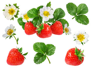 Fototapete - strawberry and strawberry flower isolated on white