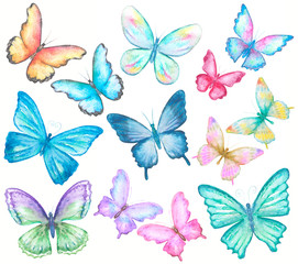 watercolor butterflies set on white
