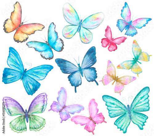 watercolor butterflies set on white