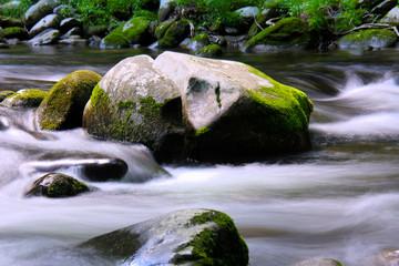 Little Piegon River