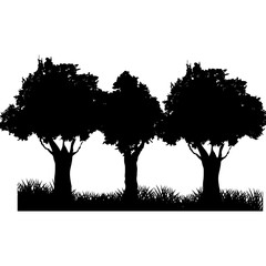 three tree field silhouette. branch trunk foliage image vector illustration