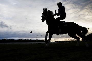 A horse is seen in silhouette making its way onto the track during morning workouts at Belmont Park in Elmont, New York