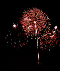 Real Isolated Fireworks, Falling Flowers Pattern