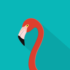 Flamingo bird flat design . Flamingo head on blue background with soft shadow. For web banner, poster summer, advertising, info graphic and layout design. Vector illustration.