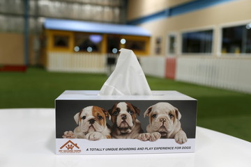 Tissue box with a picture of dogs is seen at My Second Home, a newly opened luxury pet resort and spa, in Dubai