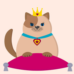 A brown cat princess is sitting on a pillow.