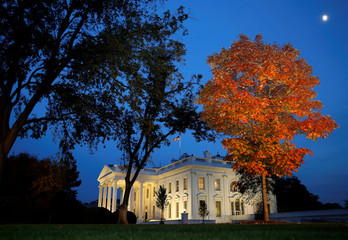 A tree is awash in autumn color as the moon rises over the White House on election night in Washington