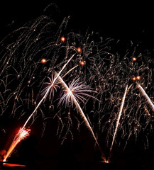 Real Isolated Fireworks, Coconut Trees Forest Pattern
