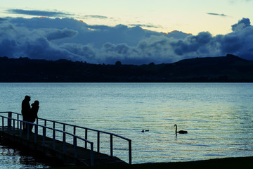 Silhouette of family standing on the bridge ,  looking at swans at Lake Taupo in the evening , North Island of New Zealand