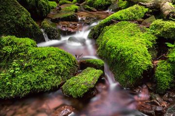 fließender Bach Steine mit Moos Wasser
