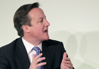 Britain's Prime Minister David Cameron speaks during the Northern Future Forum in Riga