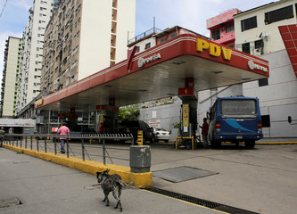 A dog walks past a gas station with the logo of the Venezuelan state oil company PDVSA in Caracas