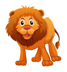 Wild lion on white background