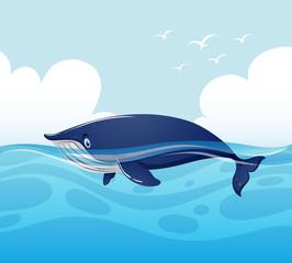 Blue whale swimming in ocean
