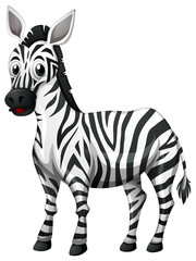 Cute zebra on white background