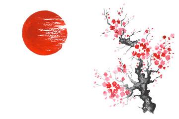 Wall Mural - Japan Traditional japanese painting Sumi-e art Sakura Sun
