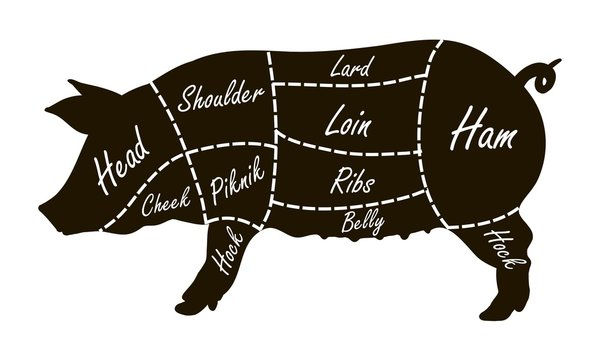 Pork cuts butcher diagram