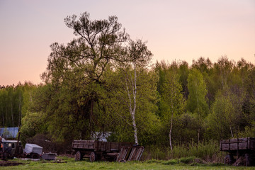 Old cart on the background of nature