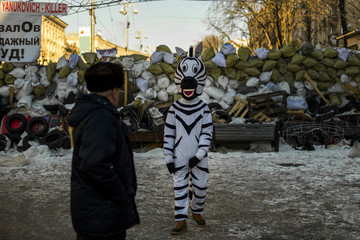 Man in zebra costume invites passers-by to have picture taken in exchange for money outside barricade at Independence square in Kiev