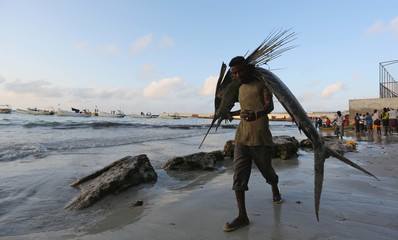 A Somali fisherman carries a fish from his vessel on the shores of the Indian Ocean on Liido beach, in Mogadishu