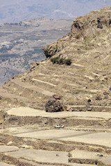 An off-road pickup vehicle drives through dry terraces in al-Hamia district west of Sanaa