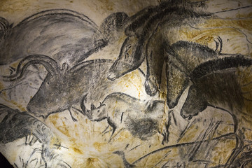 A replica of pre-historic drawings showing horses, rhinoceros and aurochs is seen on a wall during a press visit at the site of the Cavern of Pont-d'Arc project in Vallon Pont d'Arc