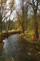 Herbst Im Wesenitztal
