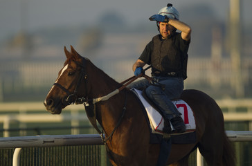 A training jockey rides Red Cadeux trained by Edward Dunlop during morning gallops in preparation for the weekend running of the 18th Dubai World Cup at the Meydan Racetrack in Dubai