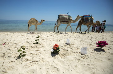 Bouquets of flowers are laid at the beachside of the Imperial Marhaba resort, which was attacked by a gunman in Sousse