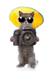 Cat photographer in summer hat and sunglasses taking pictures. isolated on white background