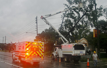 Utility crews cut tree limbs off power lines as an ambulance drives by in the rain and wind from Hurricane Hermine in Tallahassee
