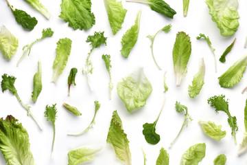 Fresh vegetable leaf