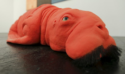 """Red Walrus 2011"", a red walrus made of dental composite resin, whiskers and brown glass eyes by Belgian artist Carsten Hoeller lies on the ground of the Art Cologne 2015 fair in Cologne"